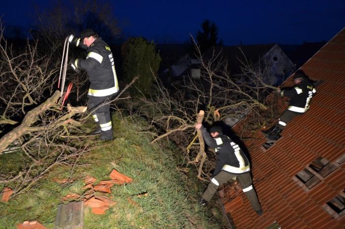 Sturmschaden in Gobelsburg und Zeiselberg